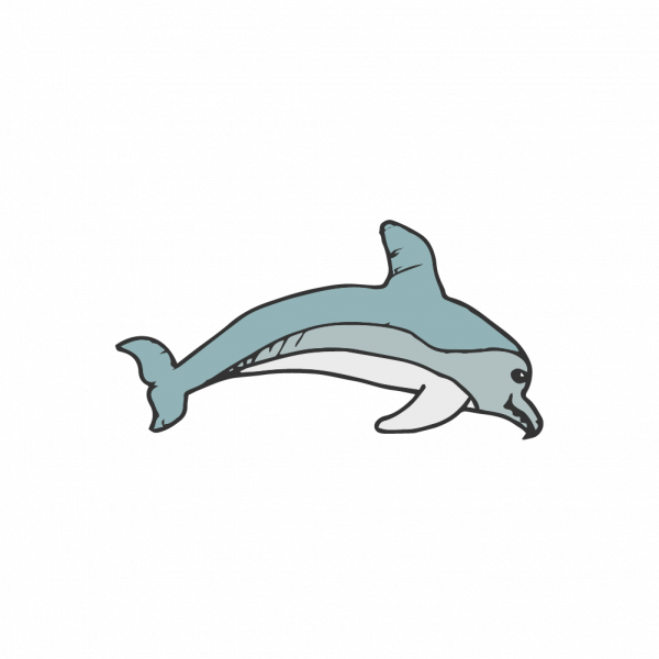 A creepy looking dolphin that looks oddly playful and friendly.