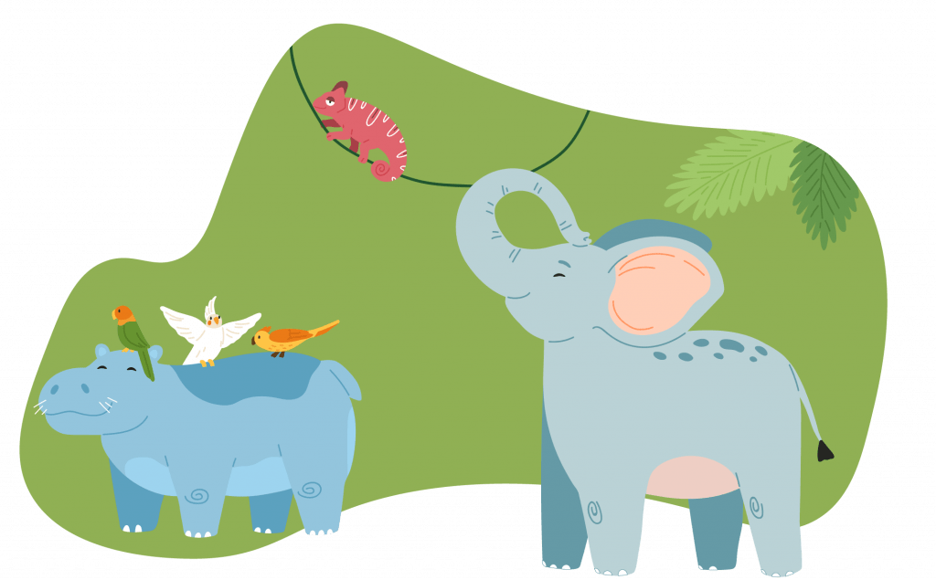 An illustrated elephant, chameleon, hippopotamus, and various tropical birds and foliage in front of a decorative green blob shape