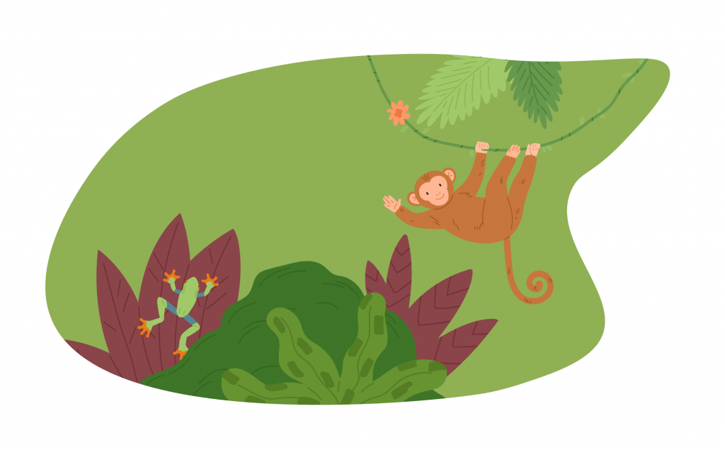 A illustrated frog crawling on foliage, a monkey hanging from a vine, and various foliage in front of a decorative green blob shape