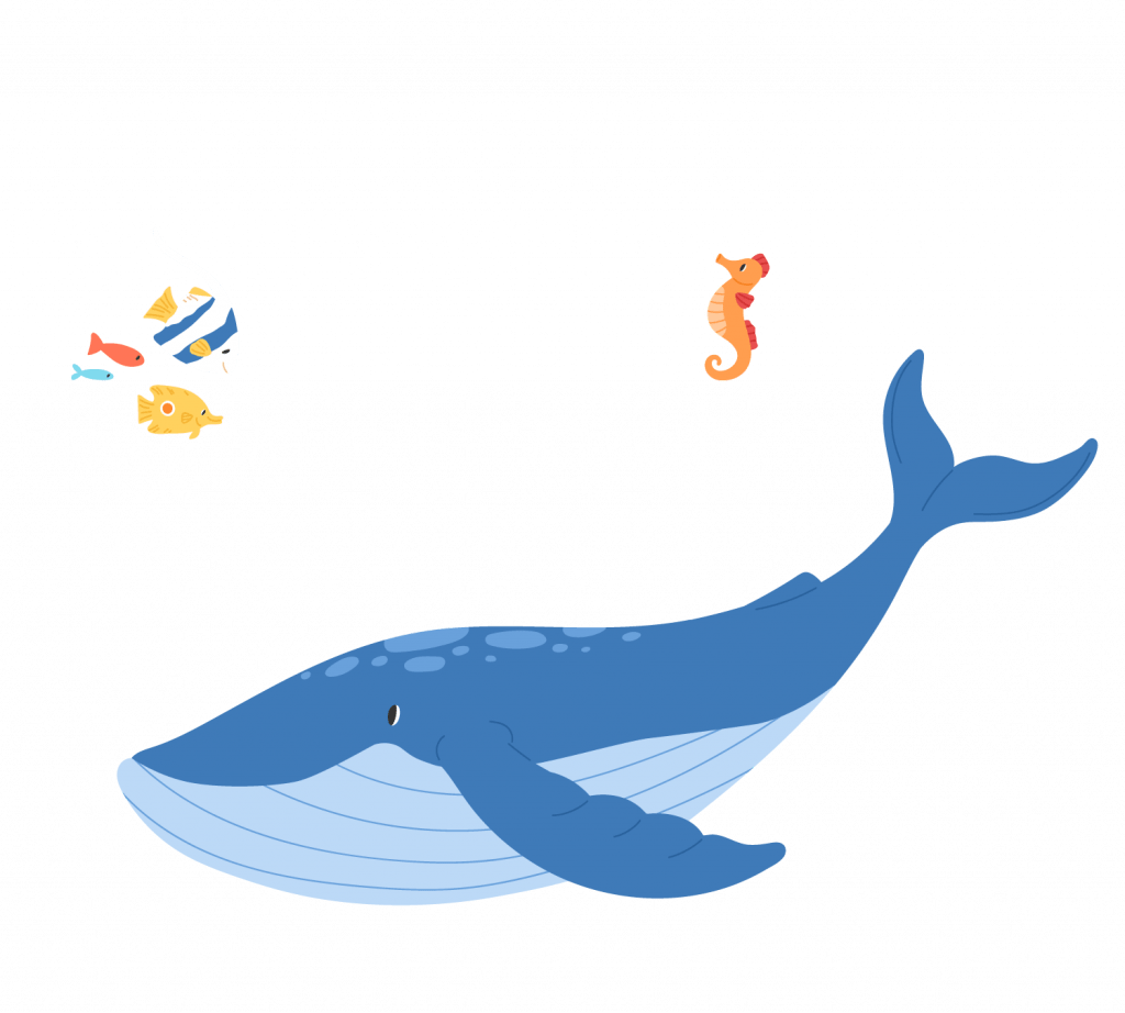 A illustrated whale, seahorse, and various tropical fish swimming in water