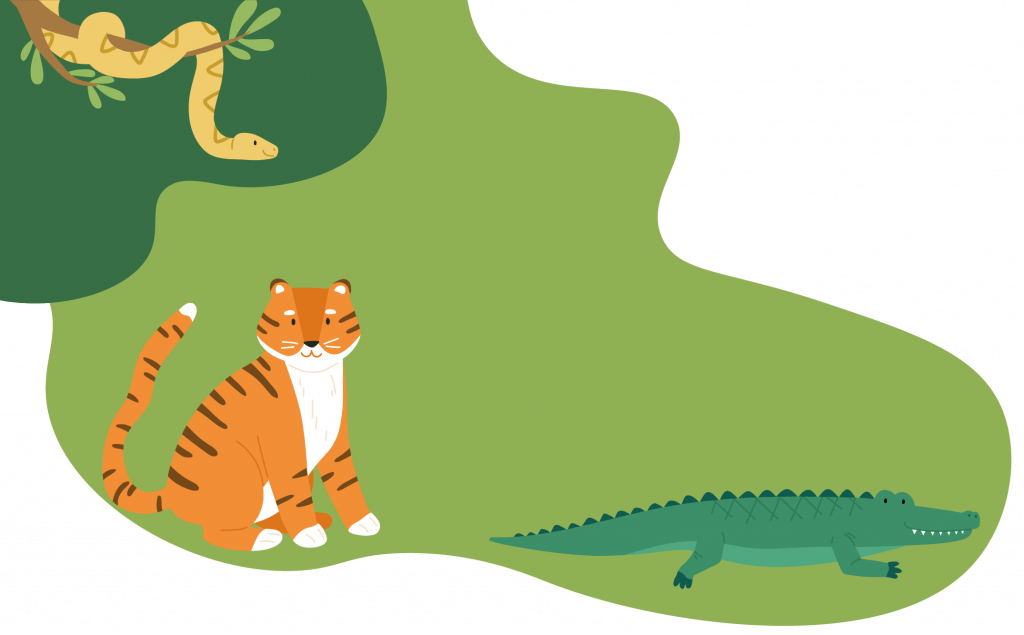 A illustrated tiger, snake, and alligator in front of decorative green blob shapes